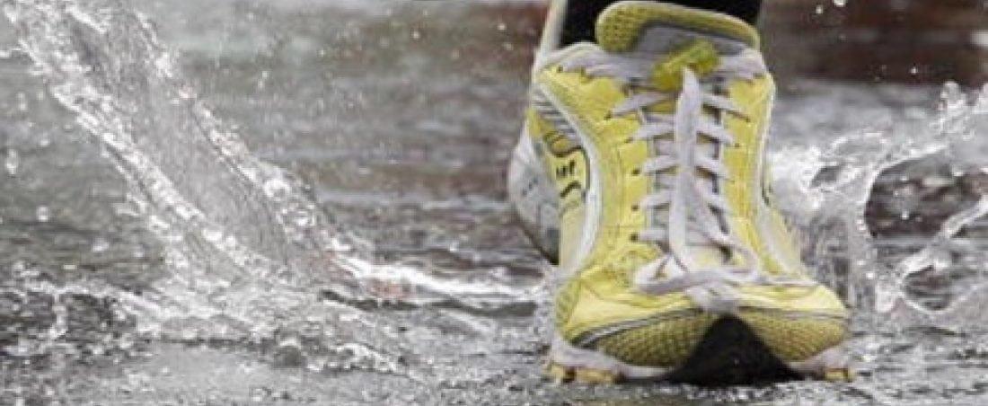 Generic Sports Image 26